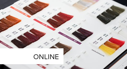 online PAUL MITCHELL® Color System